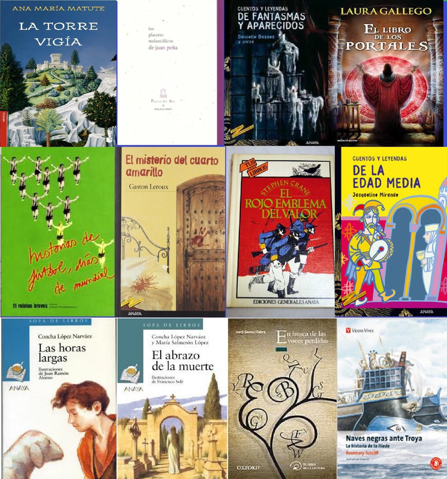 Biblioteca IES Profesor Tomás Hormigo. Library: Nuevos