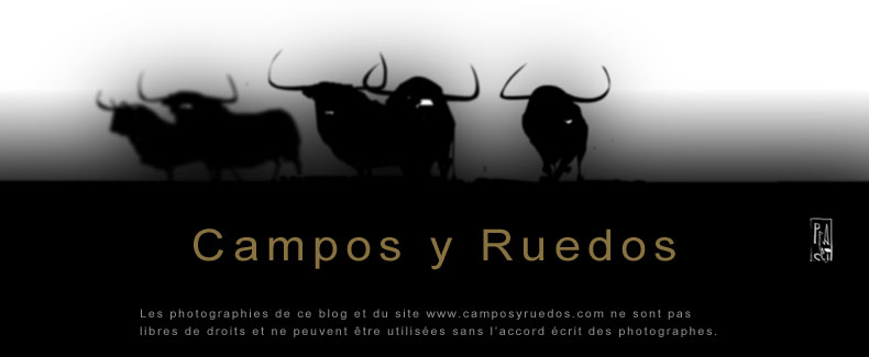 Campos y Ruedos