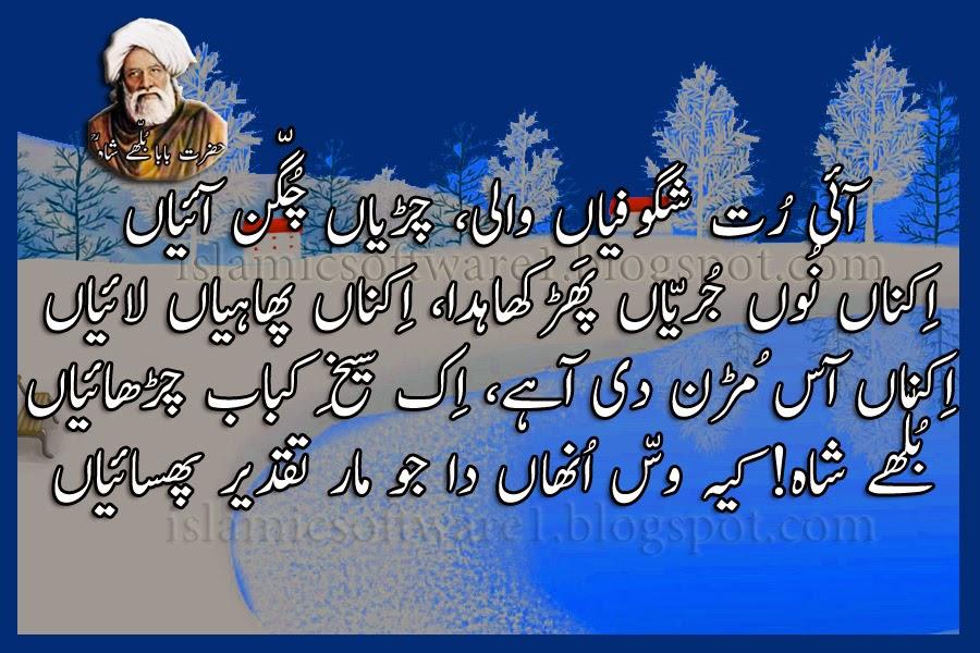 baba bulleh shah punjabi poetry 1