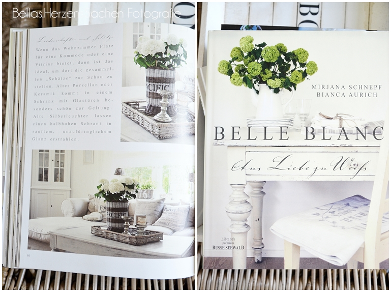 Blog Rezension Belle Blanc