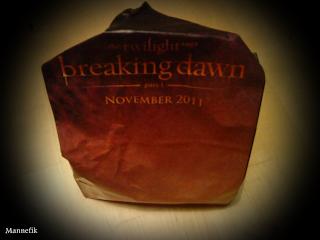 merchandising de Breaking Dawn   A8215f86f9c95e12489c2b3b4b774