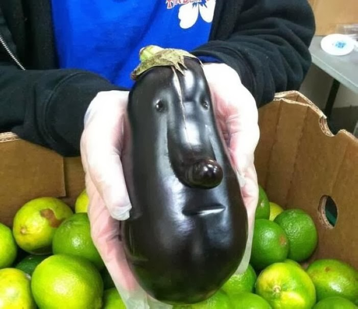 Ridiculous Faces on Inanimate Objects