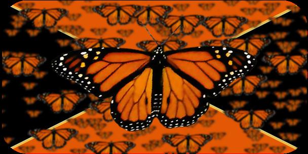 The Fluttering Horde (10-6)