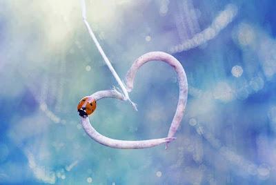 Lettre d'amour fort 3
