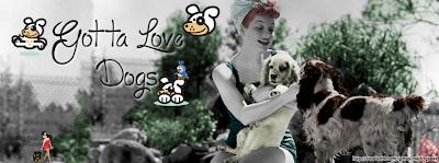 Gotta Love Dogs