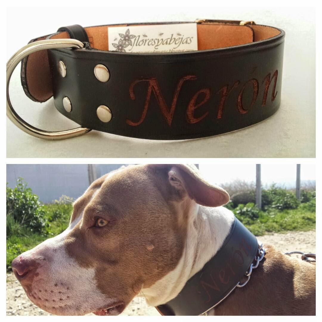 Collar para perro grabado con su nombre , realizado a partir de un cinturon. Referencia 8020 Precio 18\u20ac VENDIDO