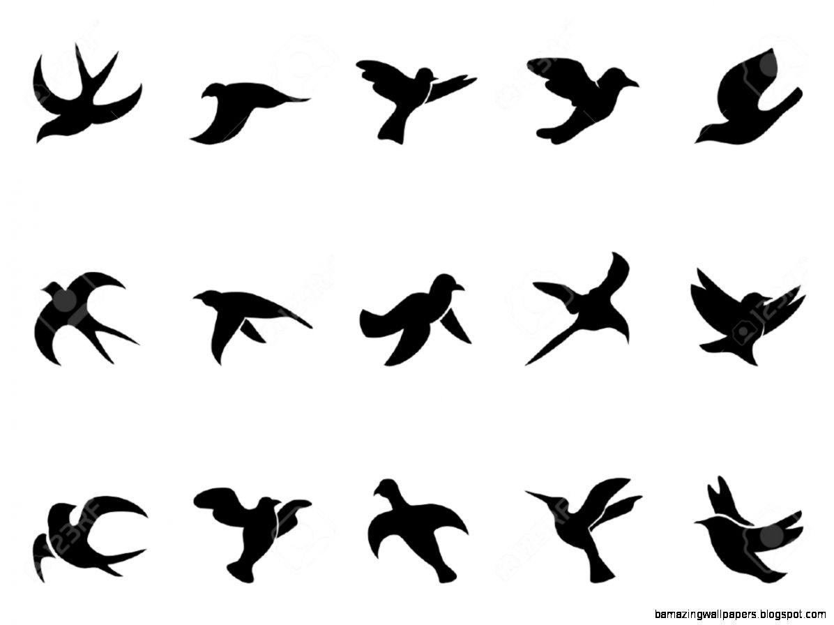 Simple Flying Bird Outline  Amazing Wallpapers