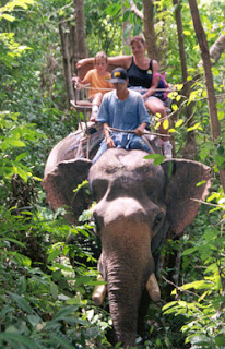adventure travel to asia aoling thailand elephant safari
