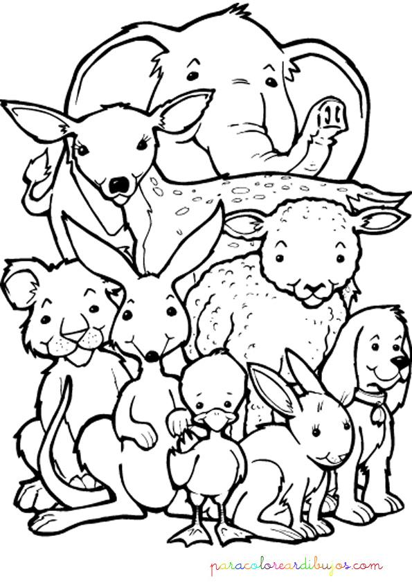 Colorear Y Pintar Dibujos De Animales 1 Colorear Y - Animales ...