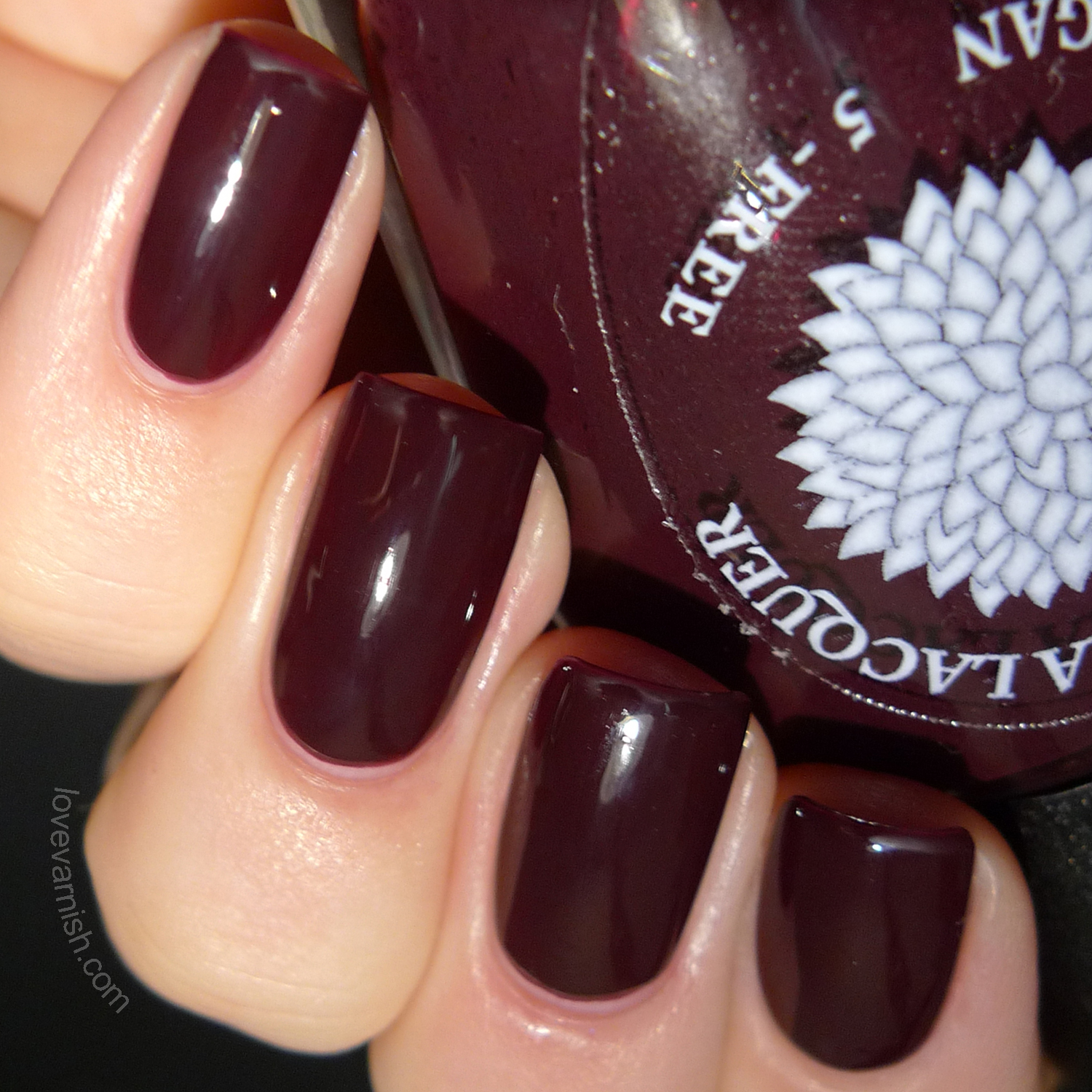 Black Dahlia Lacquer Blood Roses