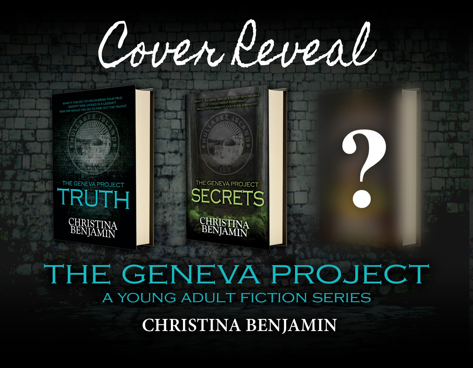 Cin city cover reveal lies by christina benjamin fandeluxe Images