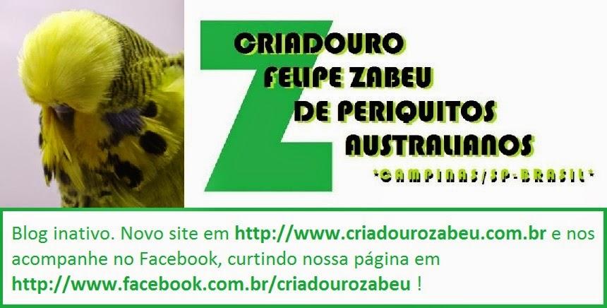 CRIADOURO FELIPE ZABEU DE PERIQUITOS AUSTRALIANOS