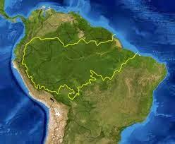 AMAZONAS YA NO SERA EL PULMON DEL PLANETA