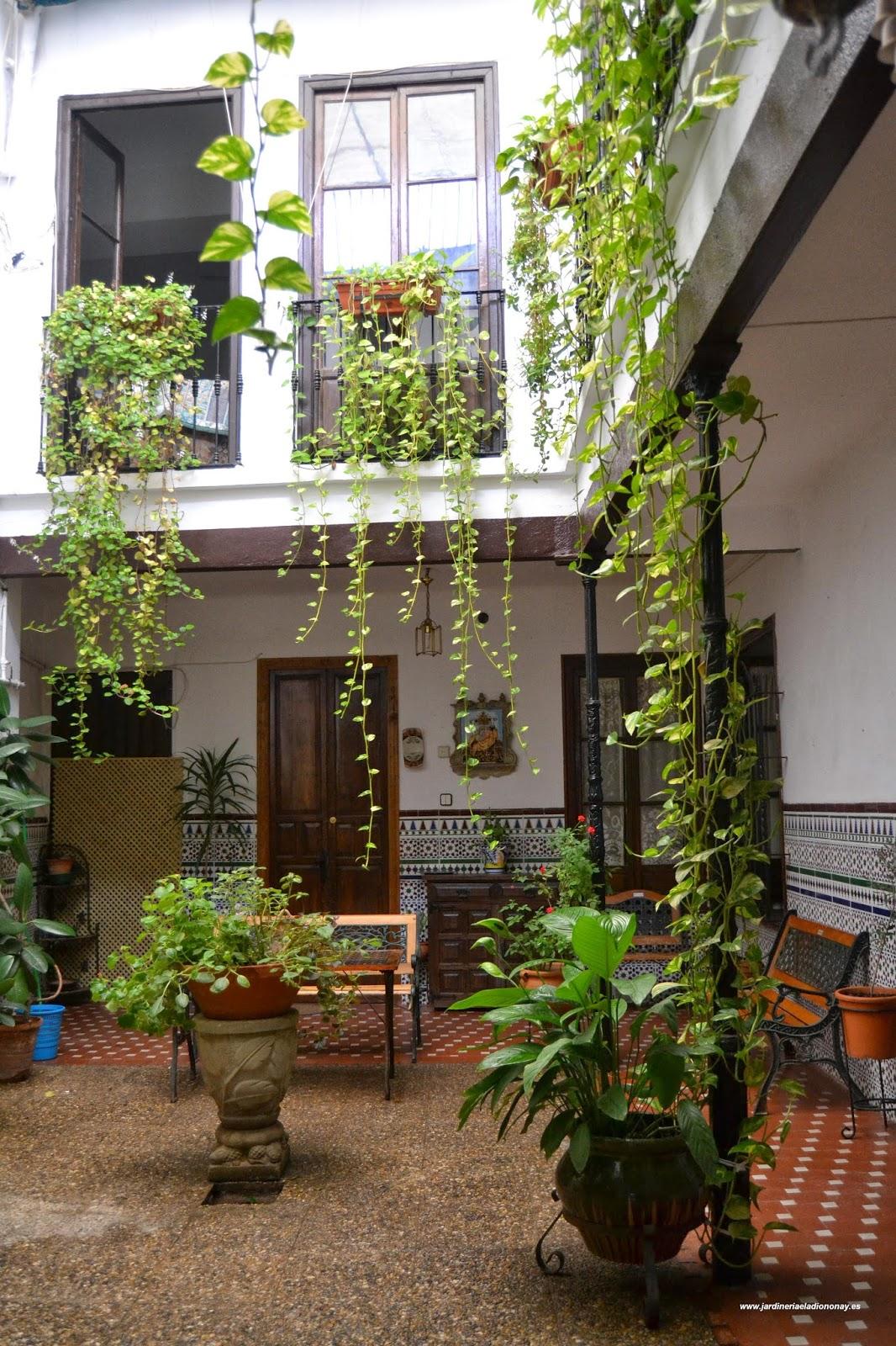 Jardineria eladio nonay patios andaluces jardiner a - Fuentes para patios ...