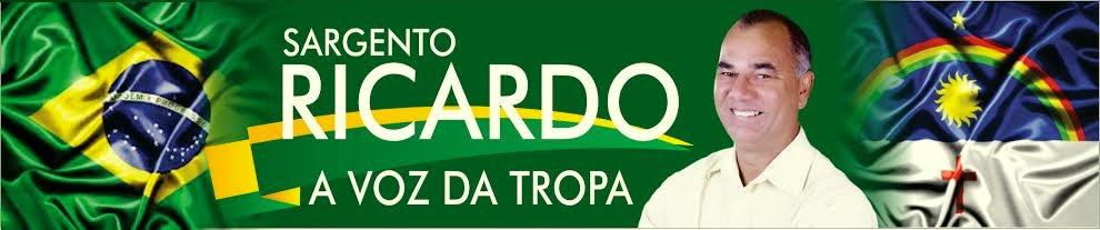 BLOG DO SARGENTO RICARDO