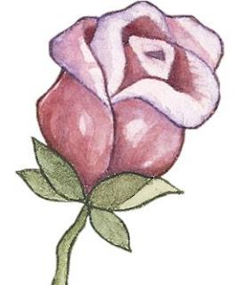 capullo de rosa