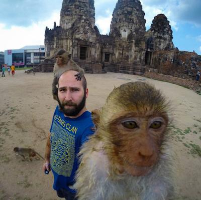 Lop Buri Monkeys