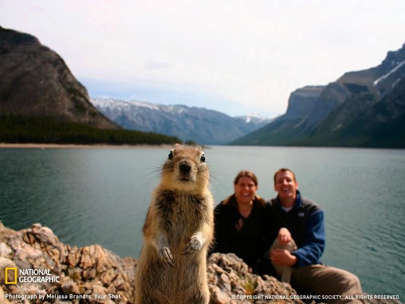 Foto Paling Terkenal di Dunia Yang Tidak Sengaja Terfoto