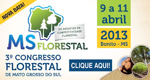 MS Florestal