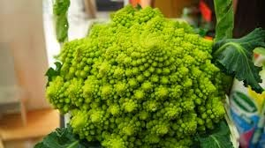 Grandes Beneficios Col Romanesco