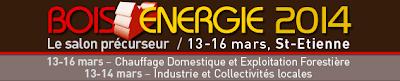 http://boisenergie.com/