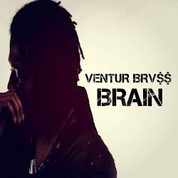 Brain - VeNTUR BRV$$