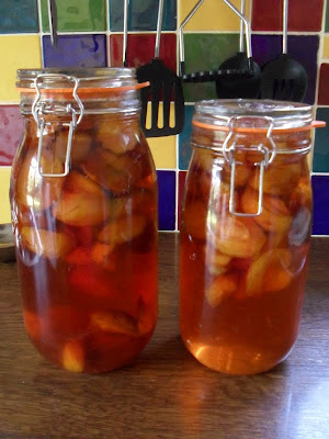 How to make plum vodka, plum rum and probably any other plum based alcohol! Plum rum is yummy! Second hand Susie blog.