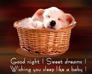 Gud Nite Sms And Messages