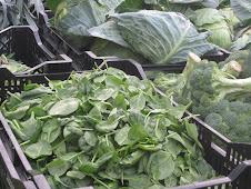 Madura's Produce