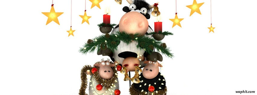 Merry Christmas sheeps