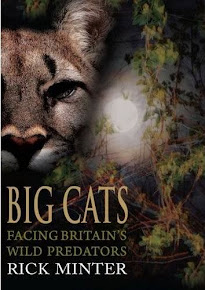 Big Cats: Facing Britain's Wild Predators