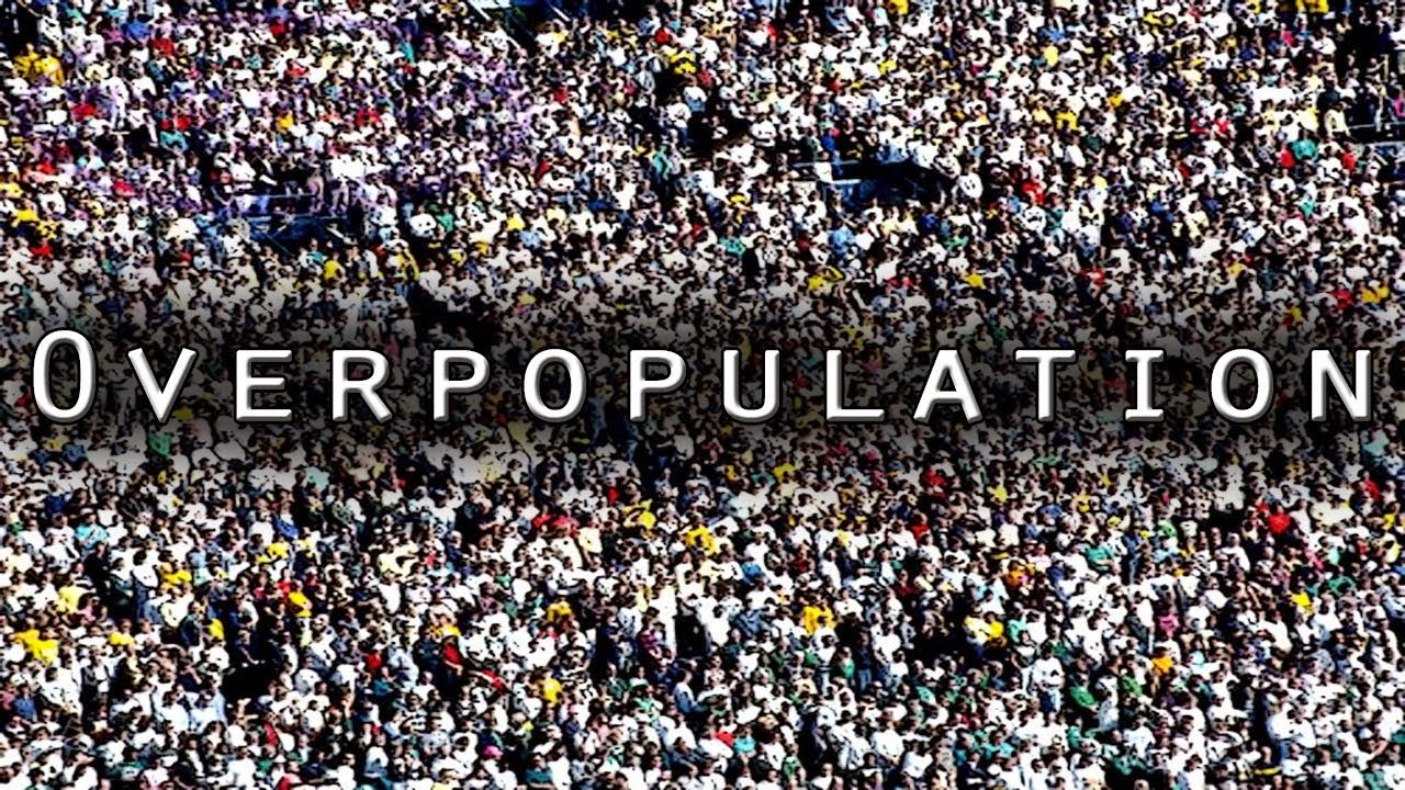 essay on overpopulation in china Overpopulation outline china's ratio is closer to 18:1 and india hits an astounding we will write a custom essay sample on overpopulation outline or any similar.