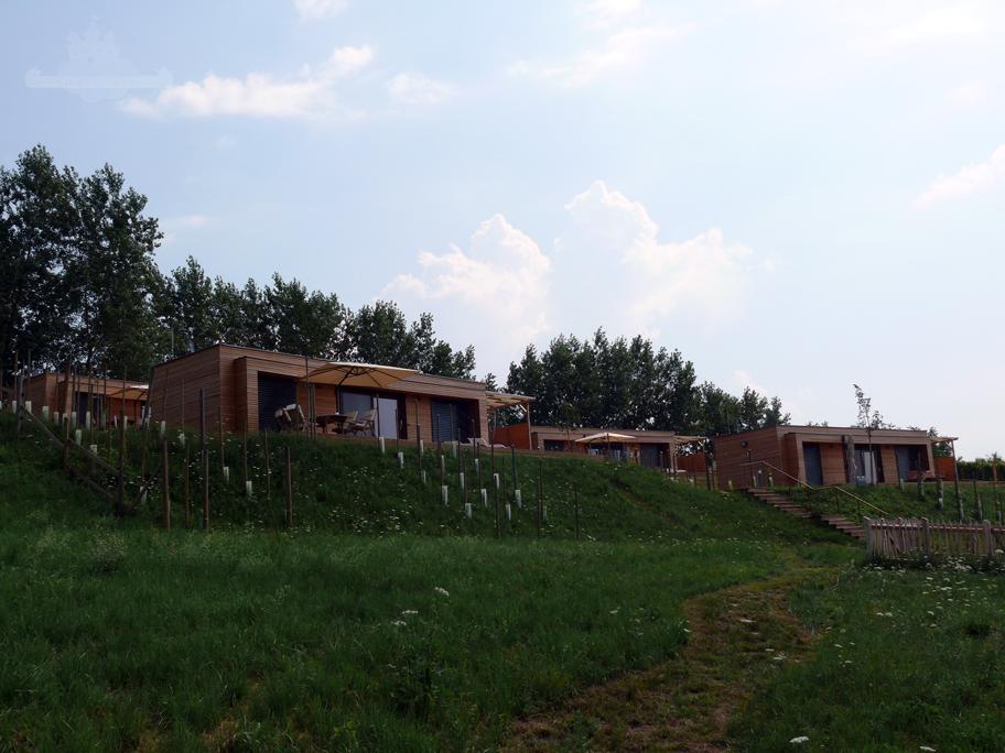 Weinurlaub Weingarten Resort Unterlamm-Loipersdorf
