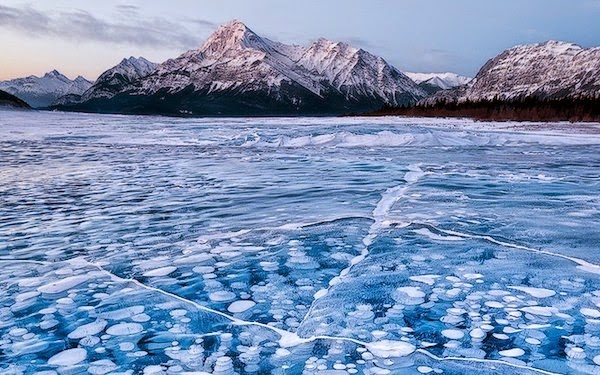 Frozen methane bubbles in Alberta, Canada. - The 30 Most Amazing Photos Of Frozen Things In Honor Of The Coldest Morning Of The 21st Century