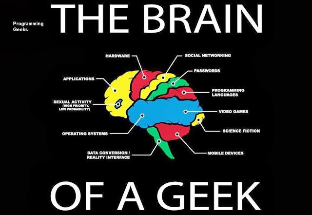 brain  Geek