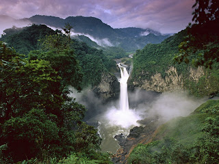 Amazon Rainforest South America