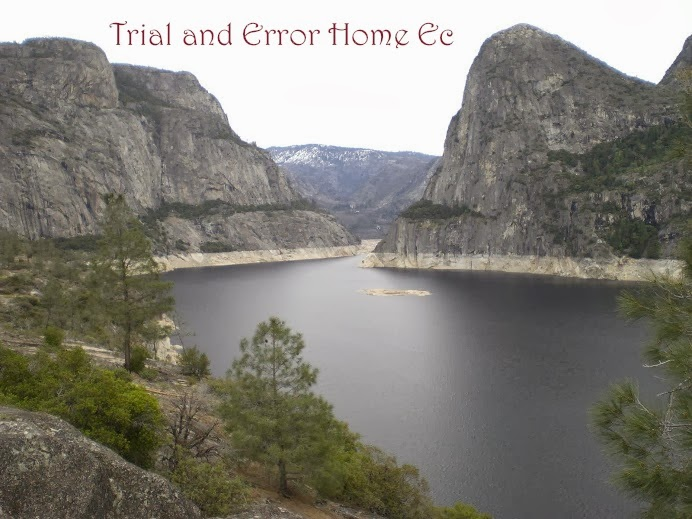Trial and Error Home Ec