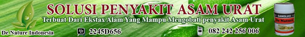 obat asam urat tradisional mujarob