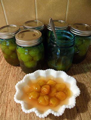 Six Jars of Wild Plums, one open and served