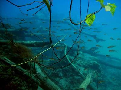 Danau Labuan Cermin Memiliki Keunikan Dengan Dua Rasa Berbeda