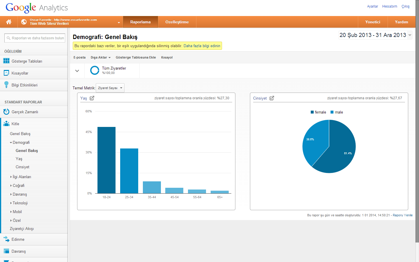 google analytics demografi genel bakis