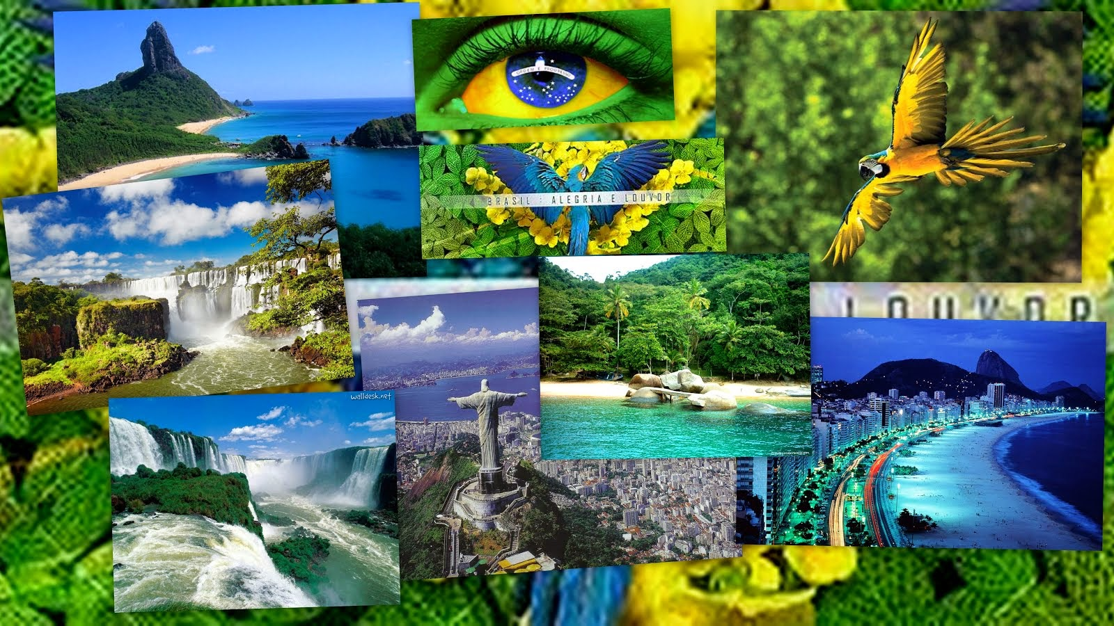 Letra cancion antigua brasil hd 1080p 4k foto for Inmobiliaria mangana