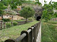 El pont sobre la riera de Clarà, el pi espontani i la boca sud del túnel del carrilet