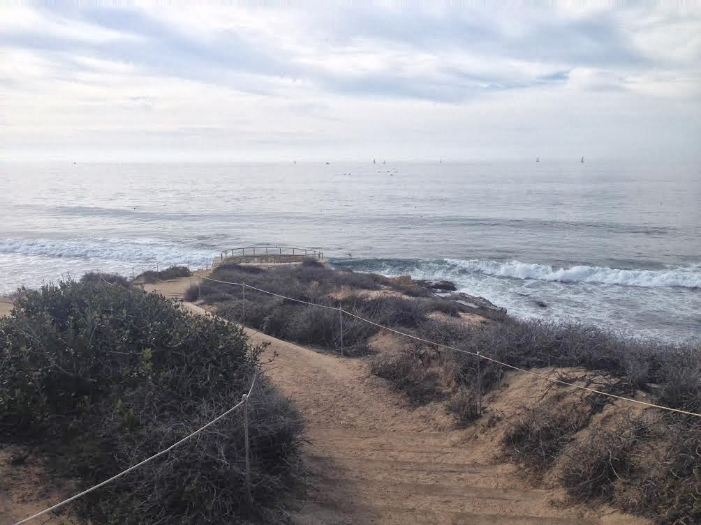 Go Hike It Crystal Cove State Park Hiking Trail