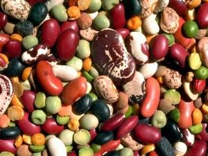insalata di fagioli allo zenzero...proprietà e virtù di questo legume.