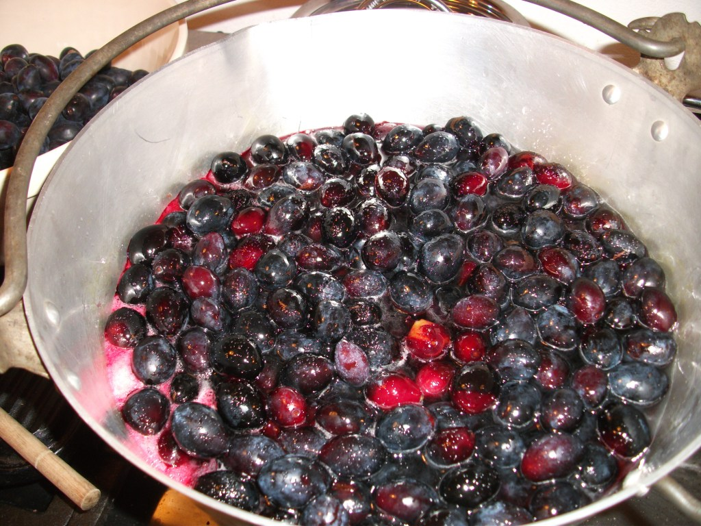 2015 08 decorating with plum and damson - This Drove Ian To Internet Search For What Other People Do With Damson Stones And We Might Even Have A Try With A Cherry Stoner With The Remaining Smaller