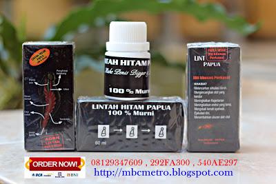MINYAK LINTAH HITAM PAPUA  08129347609