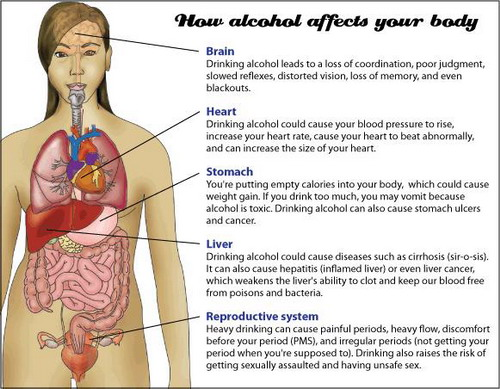 body-effect-of-alcohol-on-the-blood