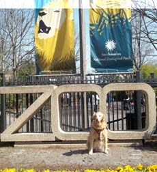 Sophie at zoo entrance