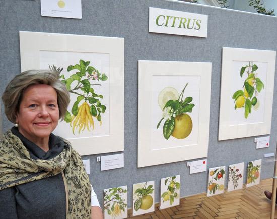 Annie Hughes RHS 2013 Citrus Plants